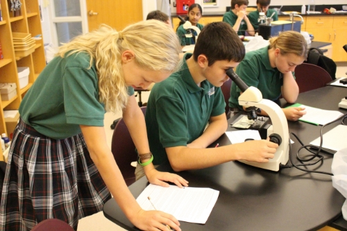 Upper school students science class